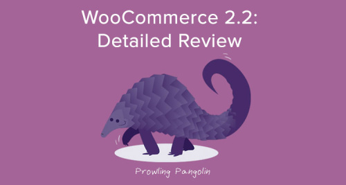 WooCommerce 2.2 Review
