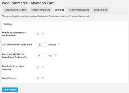 WooCommerce Abandoned Cart Pro Review | Settings