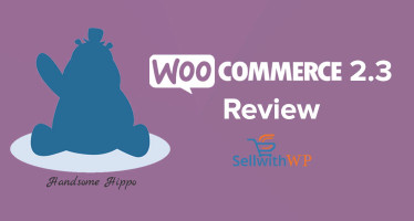 WooCommerce 2.3 Review