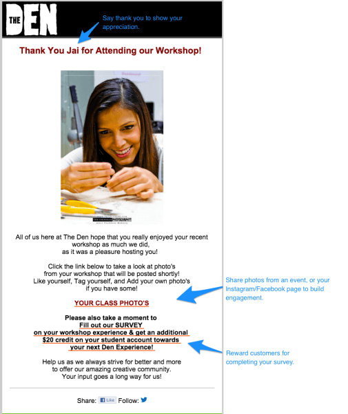 den survey email