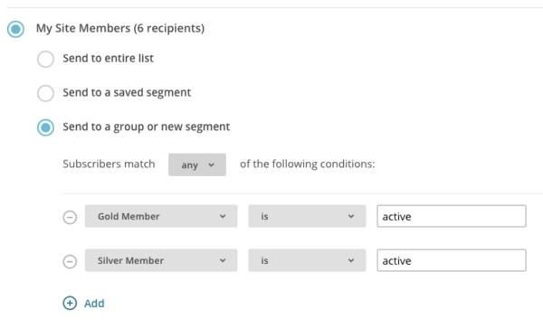MemberPress active members segment