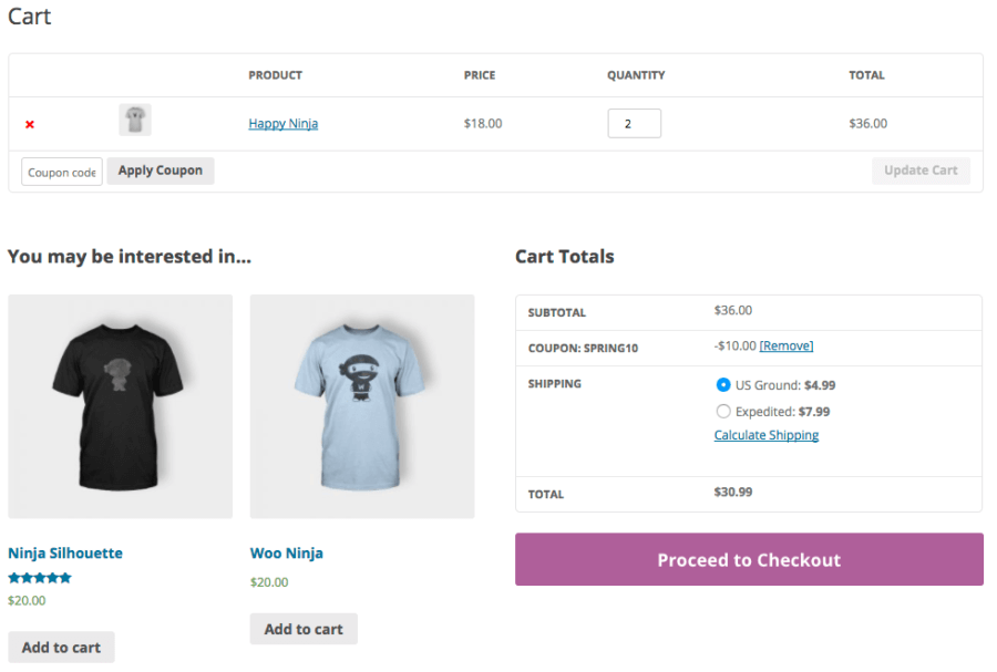 WooCommerce Coupon Label: Default output