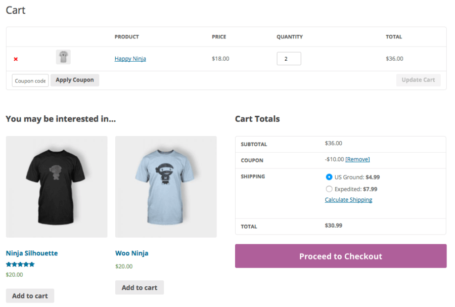 WooCommerce Coupon Label: no description output
